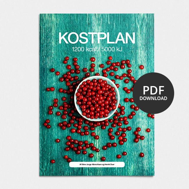 Image of Kostplan 1200 kcal